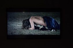 Janis Rafailidou, Our dead dogs
